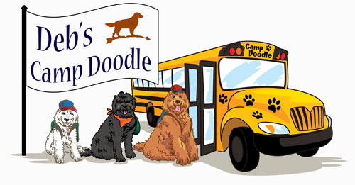 Deb's Doodles Training Camp for Puppies